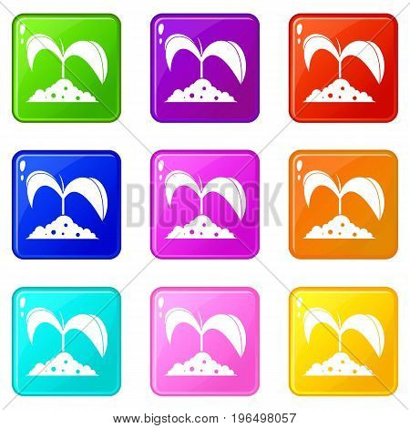 Green seedling in soil icons of 9 color set isolated vector illustration