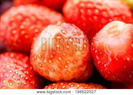 Strawberry Makro texture  . . . .