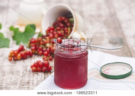 Red currants and jar of jam in garden. Natural light. Selective focus