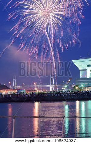 YOKOHAMA, JAPAN - JULY 15, 2017 : Summer fireworks display at Yokohama, Japan taken on July 16, 2017. Thousands assemble at bay area to witness colorful fireworks display every year