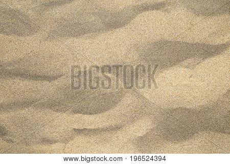 The beach sand texture close up texture