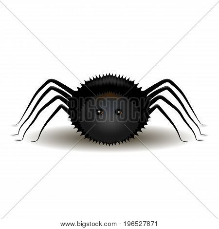 Beautiful vector illustration. Black fluffy witch spider. Halloween