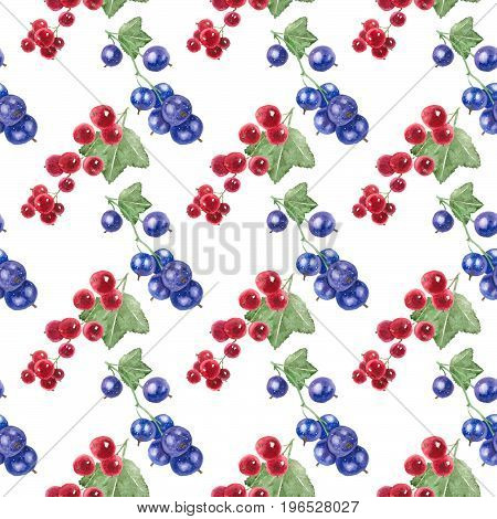 Seamless pattern of currant black and currant red on a white background