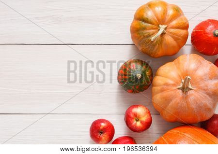 Autumn harvest background. Top view, pumpkins and red apples on weathered rustic white wood with copy space.