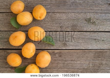 Ripe orange apricots on the left of grey wooden background
