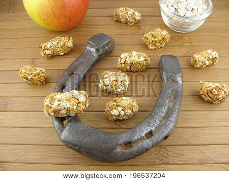Homemade horse treats with rolled oats and apples