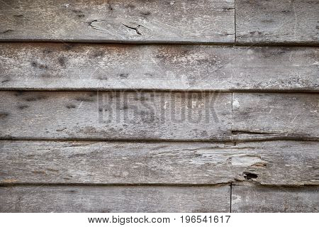 Old rough wood wall background and texture termite damage