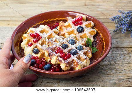 Female Serving Homemade Waffles Fresh Berry Fruit