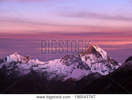 Panorama of Mount Machapuchare, also called Fishtail, or Fish tail Mount, at sunset - view from Annapurna base camp in Nepal Himalaya. Machhapuchchare is a mountain in the Annapurna Himal of north Central Nepal.