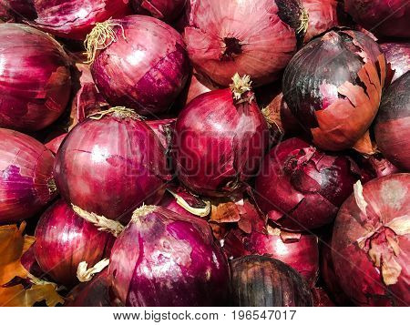 Fresh organic red onion stand out among many large background red onions in the market. Heap of red onions root
