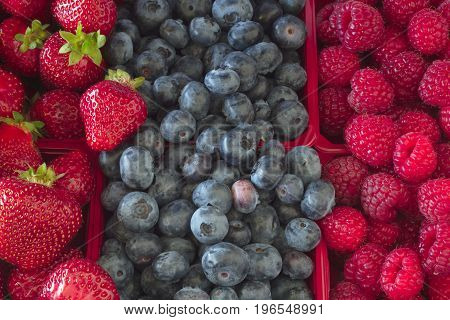 mixed berries fruits straberry blueberry and raspberry baskets mix