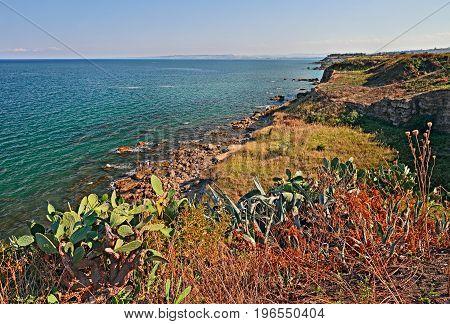 Punta Penna, Vasto, Abruzzo, Italy: mediterranean landscape of the cliff in the coast of the italian Adriatic sea with wild plants and cactus