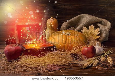 thanksgiving concept of pumpkins apple garlic straw and opened chest treasure with mystical miracle light on wooden table beautiful fine art design