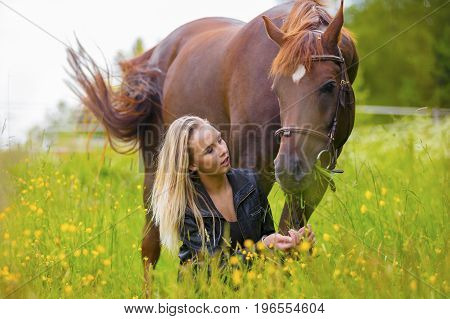 Beautiful young woman feeding nd talking to her adult arabian horse standing in a field. Relationship between human and animal.