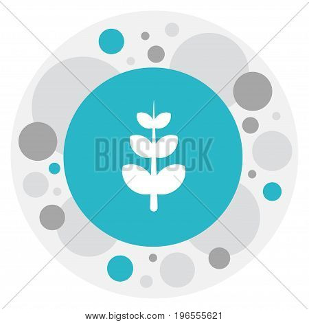 Vector Illustration Of Agriculture Symbol On Frond Icon