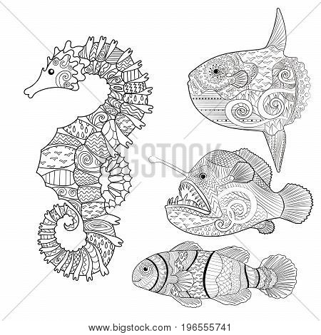 Set of fish - sea horse, moon fish, monk fish and clown fish. Collection of anti stress coloring pages with high details in zentangle style. Sketch for tattoo, poster, print, t-shirt. Vector