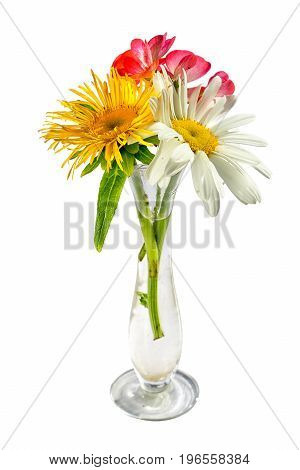 Bouquet of three flowers chamomile elecampane and geranium in a small transparent glass vase isolated on white background