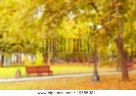 Empty autumn park nobody landscape blurred background