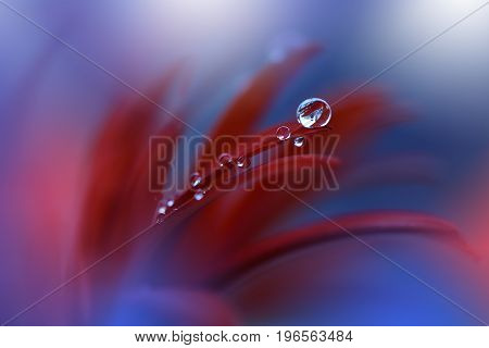 Abstract macro photo with water drops.Artistic Background for desktop.Flowers made with pastel tones.Tranquil abstract closeup art photography.Print for Wallpaper...Floral fantasy design...