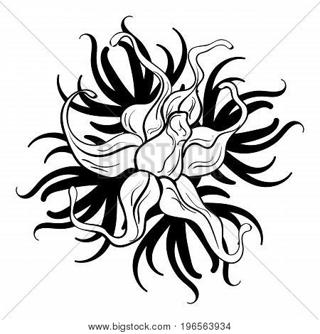 Black and white flower tattoo beautiful black and white flower with imitation lace eyelets design element