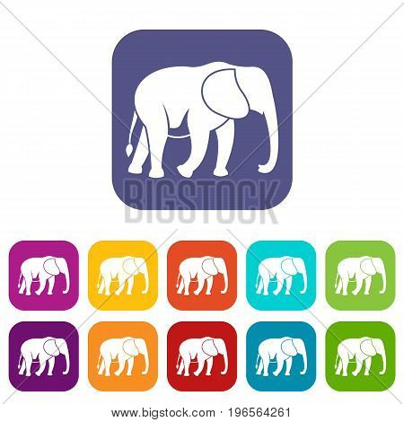 Wild elephant icons set vector illustration in flat style in colors red, blue, green, and other