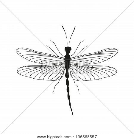 Vector illustration of a dragonfly on a white background. Silhouette of a dragonfly in flight