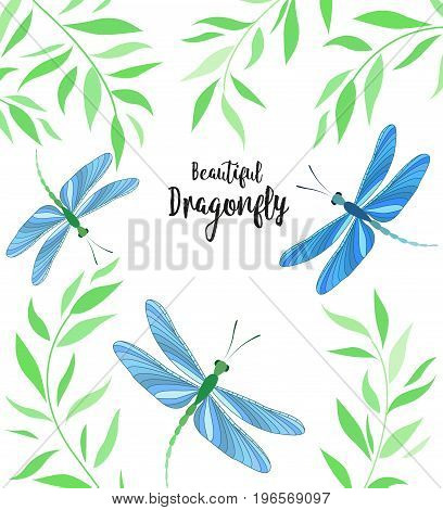 Vector illustration of dragonfly on a white background. Brightly colored dragonflies in flight