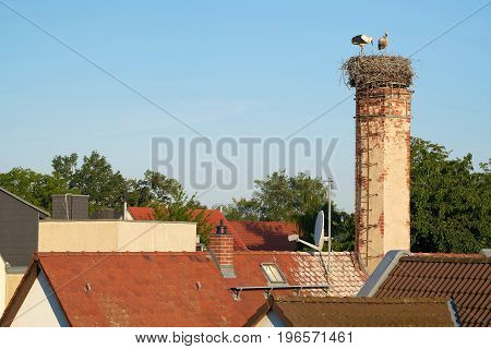 Stork nest above the roofs of the village Biederitz near Magdeburg
