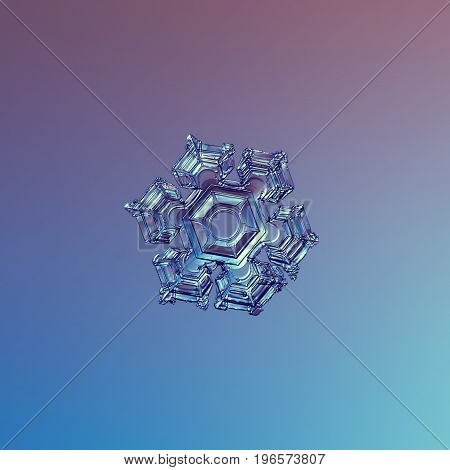 Real snowflake macro photo: medium size snow crystal of star plate type with six short, broad arms, glossy central hexagon and volume surface. Snowflake glittering on smooth pink - blue background.