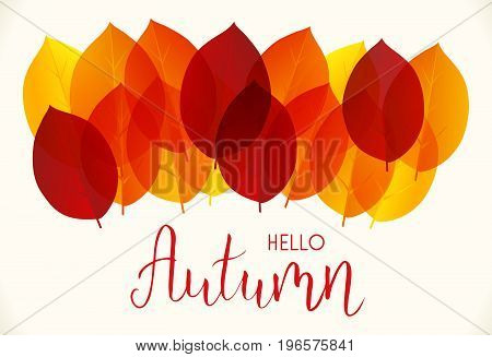 Background with multicolored autumn leaves and handwritten modern calligraphy