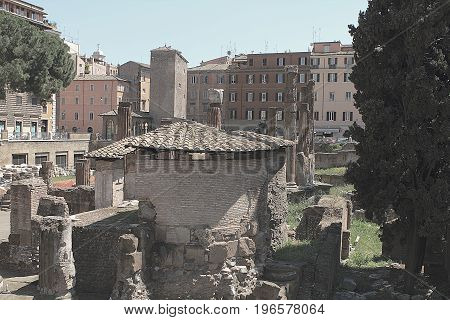 View of ancient Rome ruins at the square Largo di Torre Argentina.  Rome, Italy