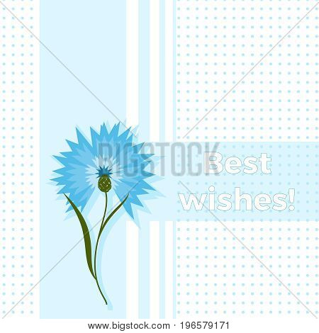 Floral Greeting Card Best Wishes With Blue Flower Cornflower Or Centaurea Cyanus. Polka Dot Backgrou