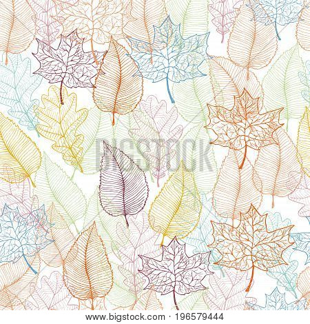 Autumn leaves seamless pattern. Vector illustration in eps8 format.