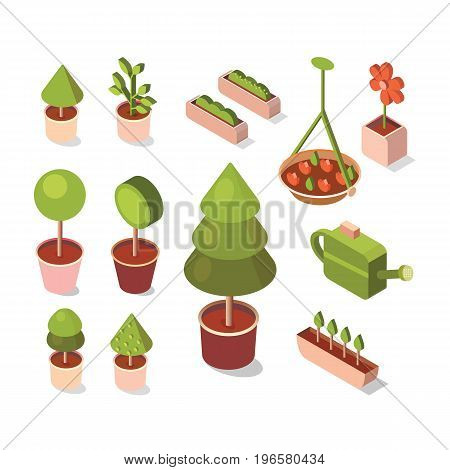 Vector isometric flowers in pot. Illustration flower shop. Design concept growing plants. Work in the garden in the summer and spring. Isometric objects.