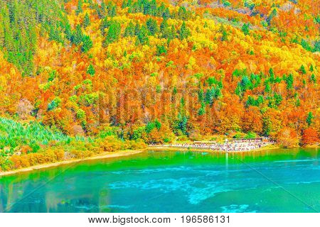 Aerial view of Five Flower Lake at autumn sunrise time. Jiuzhaigou nature reserve Jiuzhai Valley National Park China.