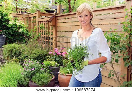 Smiling fifty year old lady gardener outside in the garden holding a pack of lobelia flowers.