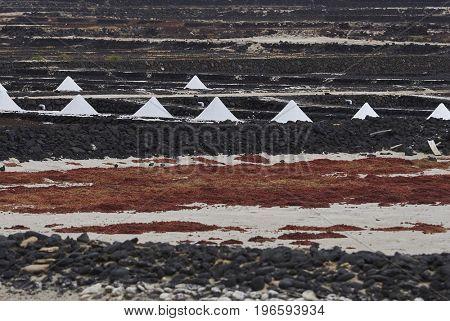 Landmarks of Lanzarote - Salinas de Janubio, main salt production of Canary islands