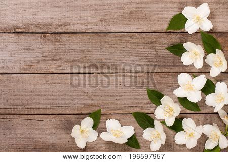 Frame jasmine flowers on the old wooden background with copy space for your text. Top view. Wedding invitation card.