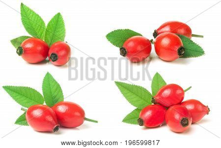 rose hip berry with leaf isolated on white background. Set or collection.