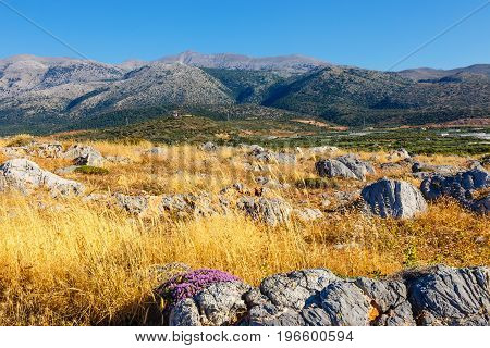 Majestic View Of Cretan Landscape At Sunset, Malia, Crete