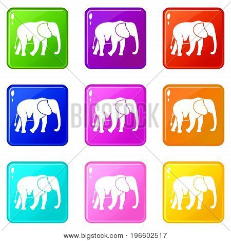 Wild elephant icons of 9 color set isolated vector illustration