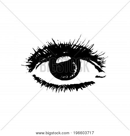 Sketch of a realistic eye. Vector illustration. Drawing by hand