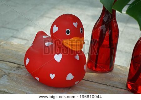 Romantic Red Rubber Duckie with White Hearts
