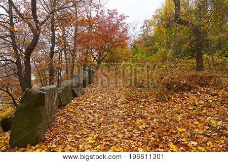 A pathway in a forest along high river bank in the autumn. A walkway covered by fallen leaves along a high river bank in fall.