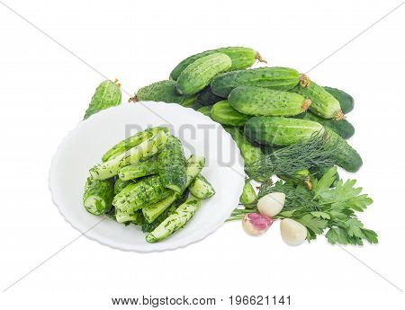 Lightly salted cucumbers on the white dish against of a pile of the freshly picked out cucumbers parsley dill garlic on a white background