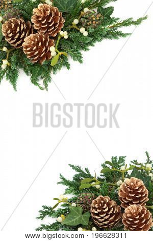 Christmas background border with gold pine cones, mistletoe, cedar cypress and juniper leaf sprigs and ivy on white background.