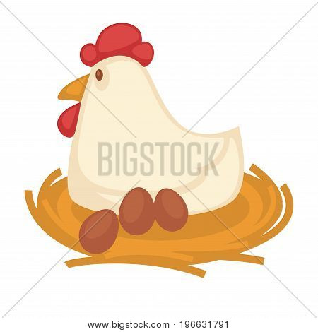Big funny hen with red head top and yellow beak sits on straw nest with eggs isolated vector illustration on white background. Healthy poultry grown at farm. Domestic bird waits for progeny.