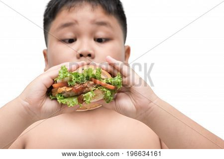 Pork Hamburger On Obese Fat Boy Hand Background Isolated