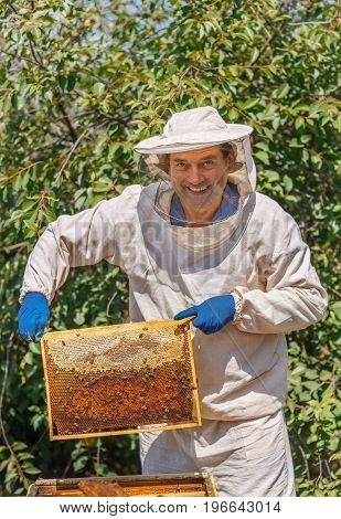 portrait of happy beekeeper holding a honeycomb full of bees. Beekeeper in protective workwear inspecting honeycomb frame at apiary. Beekeeping concept