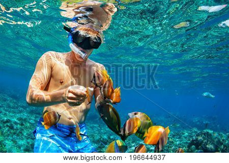 Happy family vacation - man in snorkeling mask dive underwater with tropical fishes in coral reef sea pool. Travel lifestyle water sport outdoor adventure swimming lessons on summer beach holiday